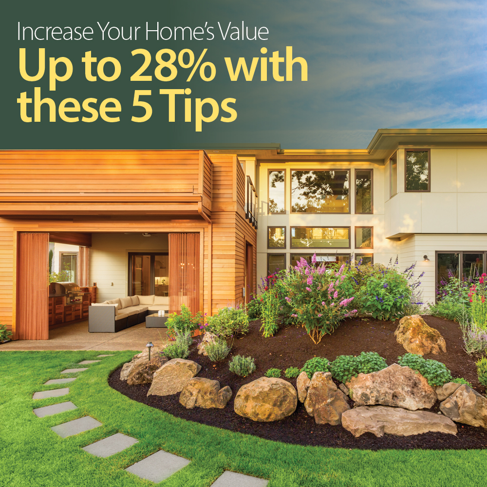 Increase your home 39 s value with these 5 tips native palm for Increase value of home